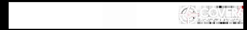 SI_dccyberwarriors_logo